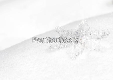 lod krysztal eisblume szron platek sniegu