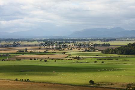 gospodarstwo rolnictwo pole szeroki daleki sunlight
