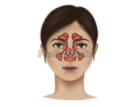 medycznych medycyna lekarski lekarskie medyczny twarz
